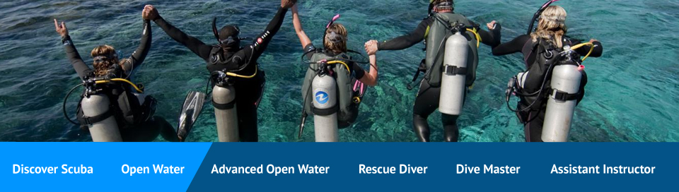 openwater dives