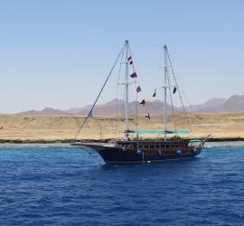 Sharm el Sheikh 2015